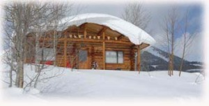 vacation rental cabin in the ohio valley in gunnison colorado for hunting